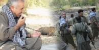 PKK'lılarBİRBİRİNE DÜŞTÜ